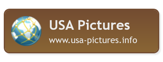 USA Pictures